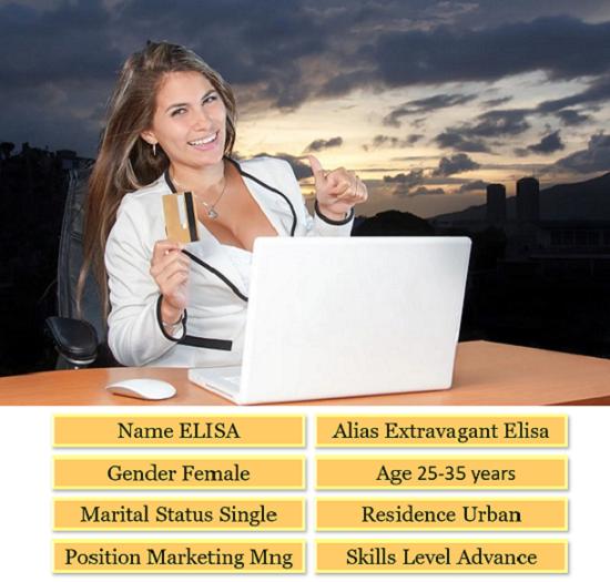 Buyer Persona of Elisa.